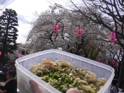 お花見焼きうどん、その2@新井薬師公園(中野)