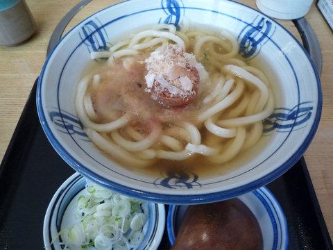 青しそと南高梅のおろしうどん@歌行燈 新宿店(新宿)