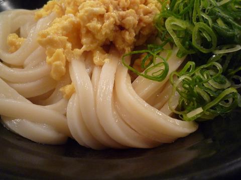 ひやたまうどん(大)@東京麺通団(新宿)、接写